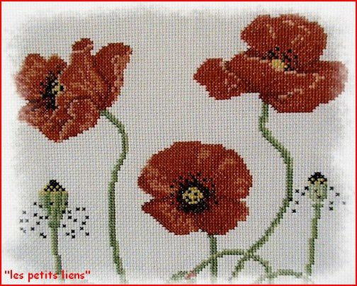 broderie coquelicot fleurs brodées 2