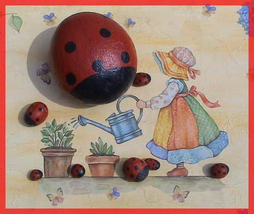 coccinelles caillou exemples pf