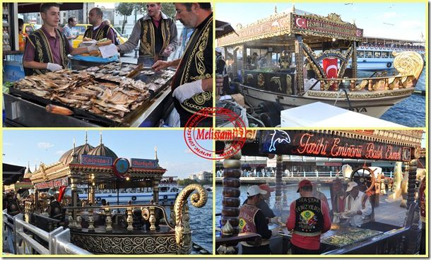 grilled fish, bosphore, istanbul