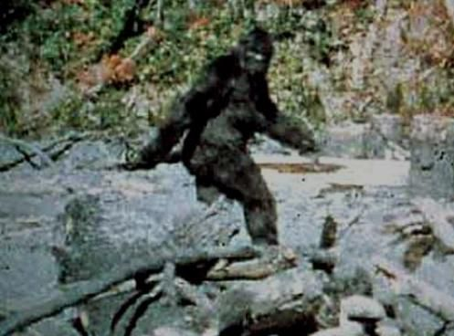 sasquatch-BIGFOOT.jpg
