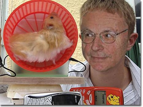 Montage-boris-hamster.jpg