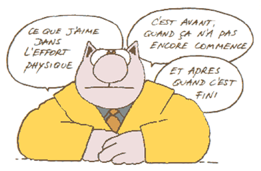 Nanowrimo-2010-le-chat.png