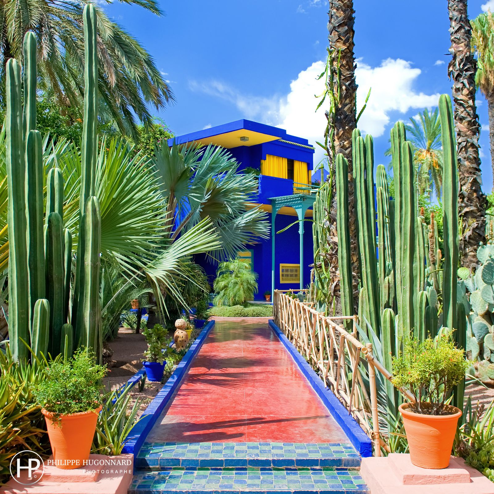 album le jardin de majorelle ysl marrakech philippe hugonnard photographe. Black Bedroom Furniture Sets. Home Design Ideas