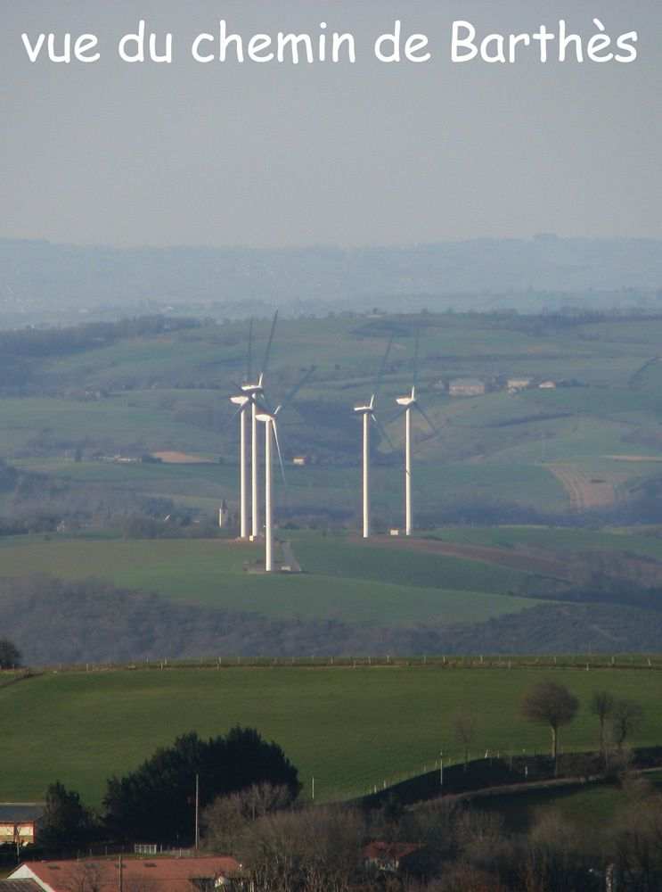 panorama : éoliennes