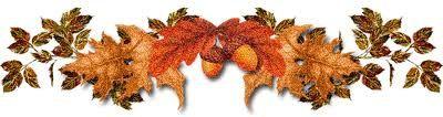 barre-automne-copie-1.jpg
