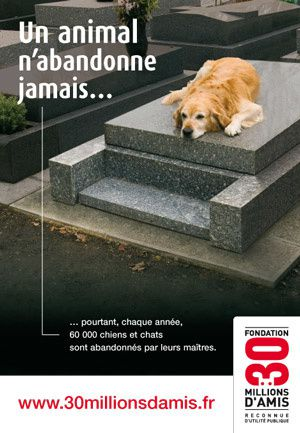 un animal n'abandonne jamais