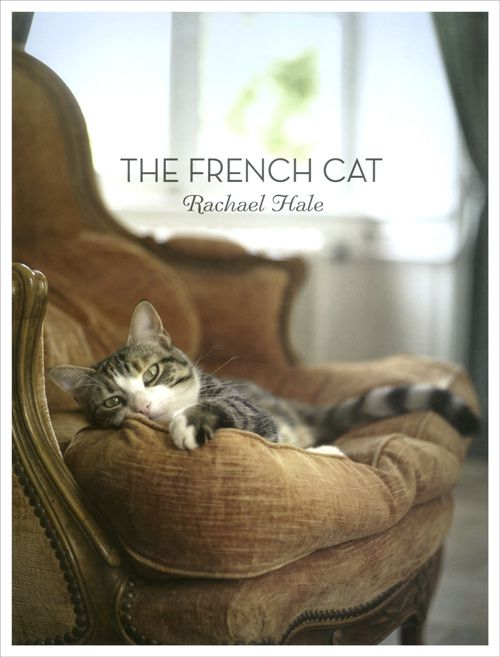frenchcatcover1.jpg