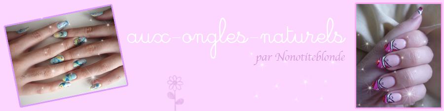 http://idata.over-blog.com/3/78/44/54/Entretien-site/Baniere-nono-V2-copie-copie.png