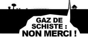 logo gds general