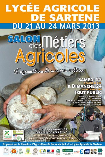 affiche_carrefour_metiers2013_web.jpg