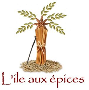 logo petit l'ile aux pices