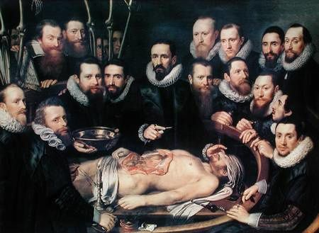 anatomy lesson doctor willem hi