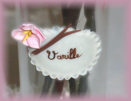 pot_gourmand_vanille3