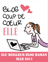 Logo Meilleur blog maman ELLE 2011-copie-1