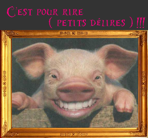 C-est-pour-rire---petits-delires------.png