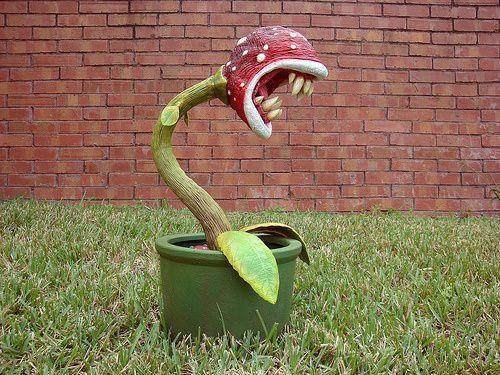 plante carnivore mario