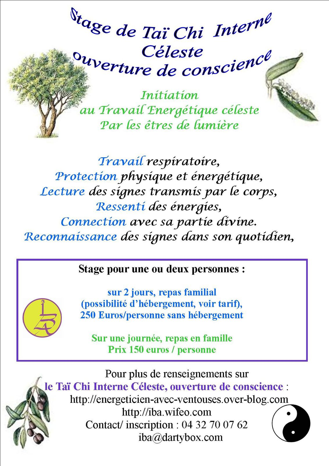 Initiation stage Tai chi interne céleste