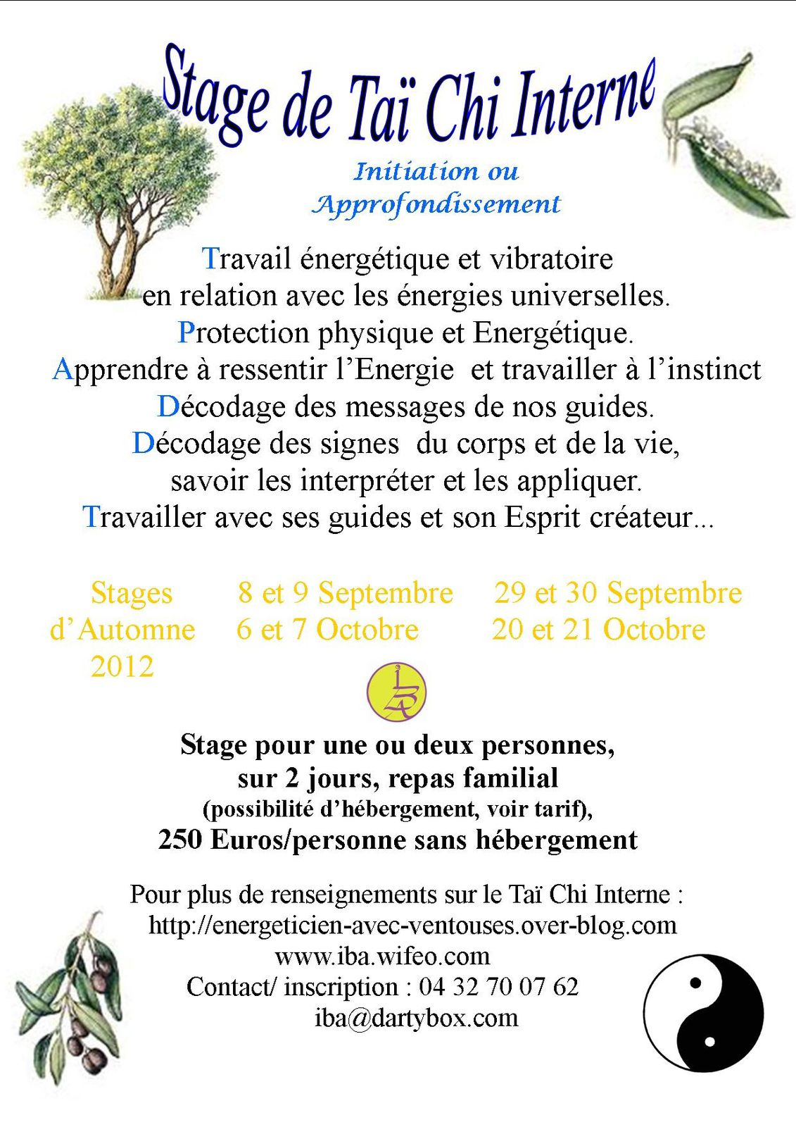 stages tai chi interne automne 2012