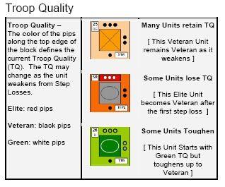 STEPS-QUAL-SYST.jpg