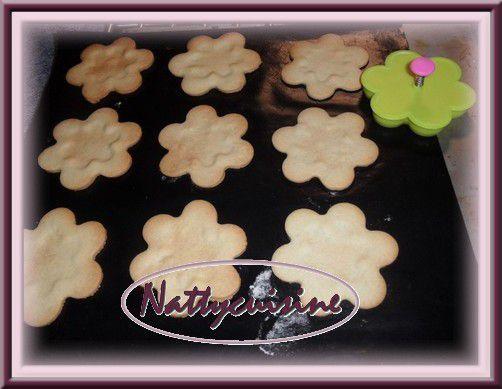 biscuit2-copie-1.jpg