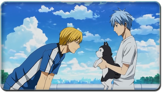 KNB24.png