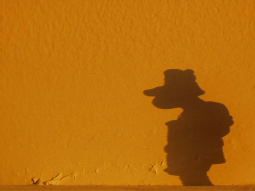 Romano-ombra.JPG