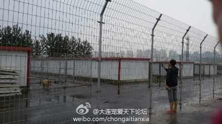 Dalian 11 08 2014-13