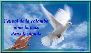 envol-de-la-colombe-vers-le-monde-copie-1.jpg