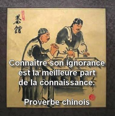 proverbe-chinois.jpg