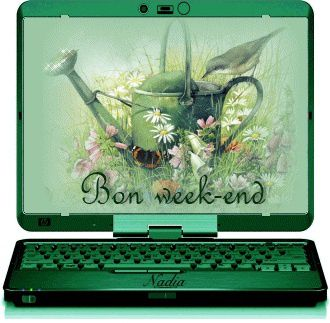 55425143bon-week-end-gif