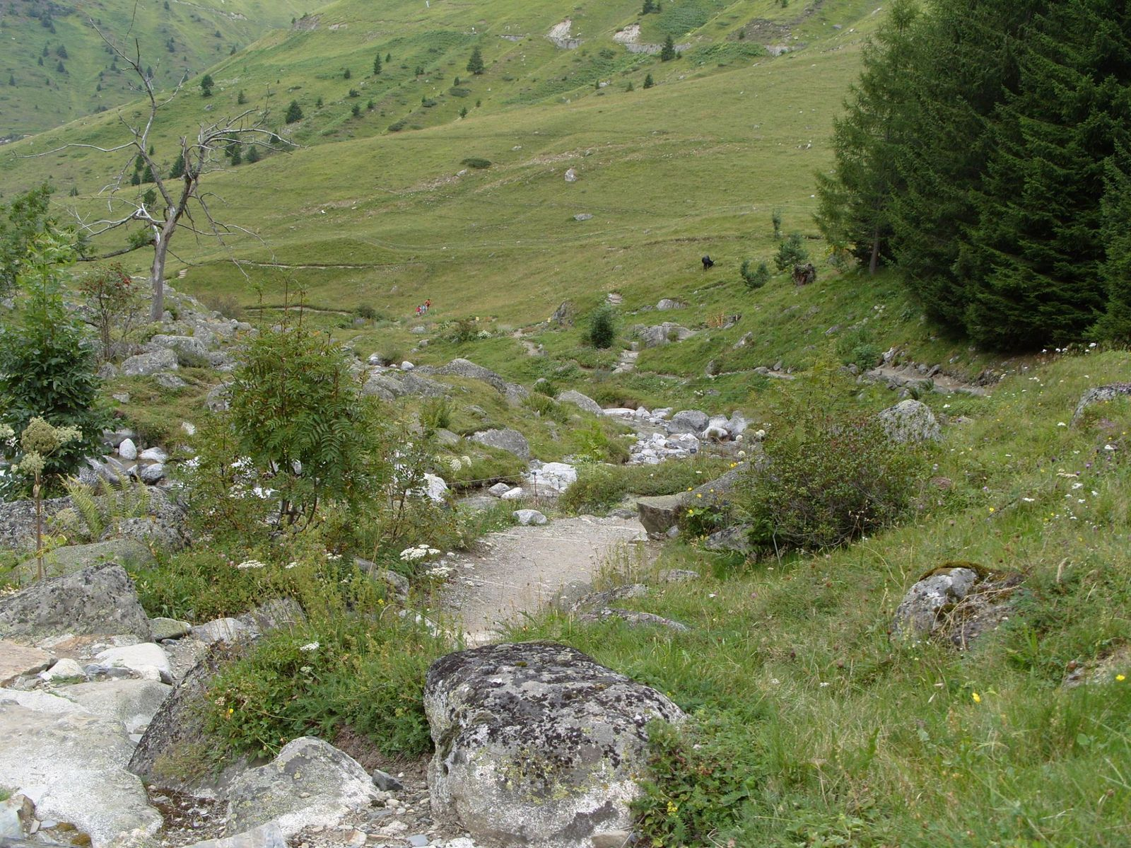 Photos que j'ai prise en Août 2011 (Hautes-Pyrénées, 65)