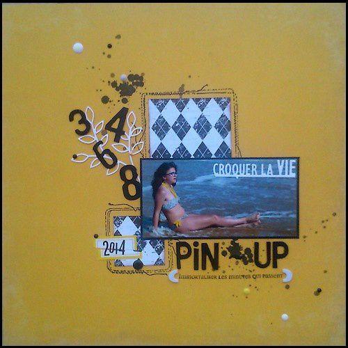 pin-up-2014.JPG