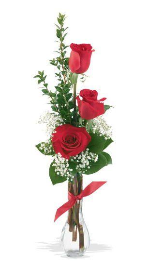 3 roses bv