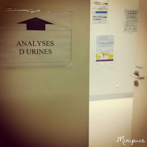 maternite-analyse-urine
