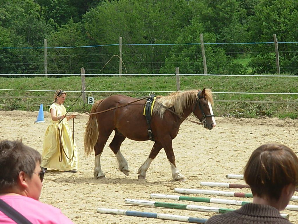 Album - Fete-Cheval-2012