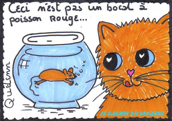 Dessin-de-chat-surrealiste.jpg