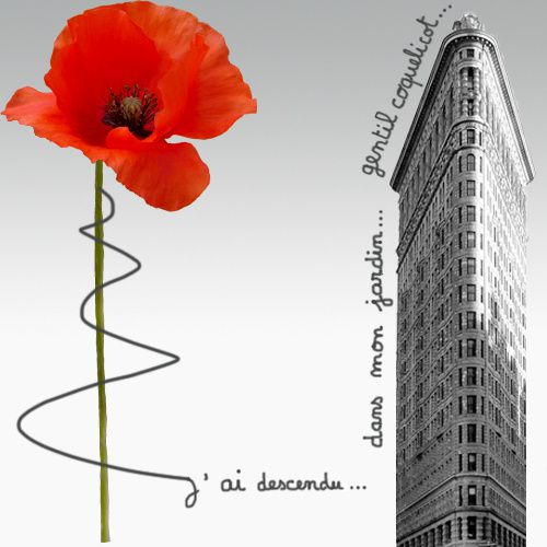 COQUELICOT page accueil overblog