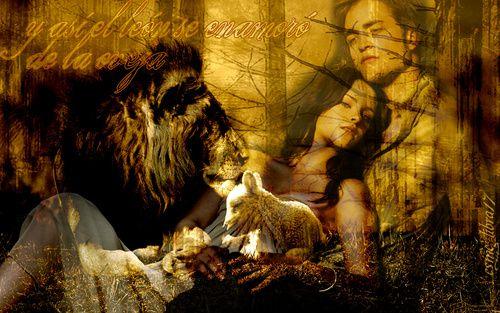 leon-y-oveja-twilight-crepusculo-7775393-500-313
