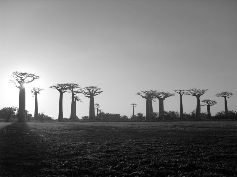Madagascar centre et sud 2