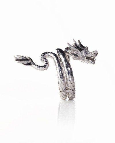 Manchette-Dragon--640x480-.jpg