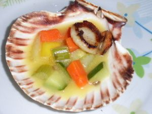 Coquille_st_jacques_2