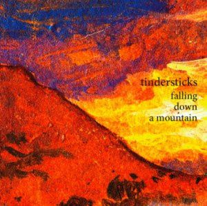 Tindersticks-10-Falling-down-a-mountain