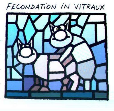 le-chat-fecondation-in-vitraux.jpg