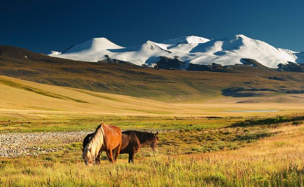 mongolie-paysages.jpg