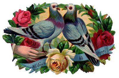 doves flowers vintage image graphicsfairy006b