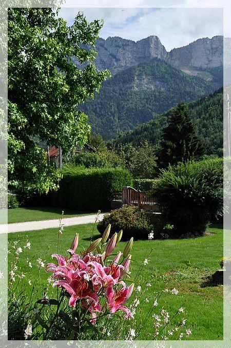 du-rose-en-fleurs 0235