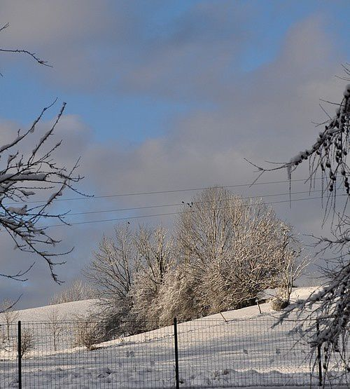 poesie-d-hiver-janvier-2015 0038