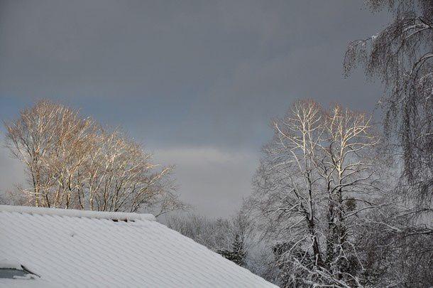 poesie-d-hiver-janvier-2015 0070