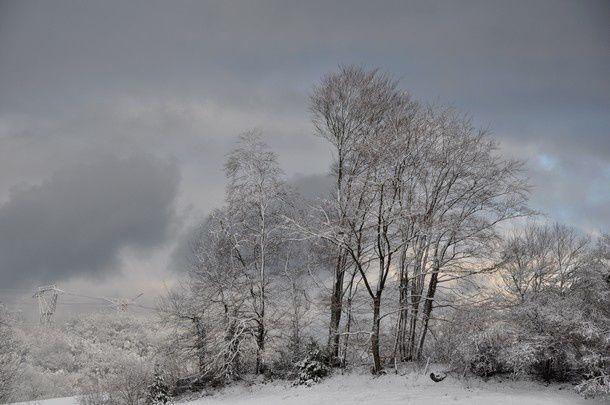 poesie-d-hiver-janvier-2015 0097