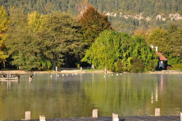 fin-oct-2014-lac-d-Annecy 0967